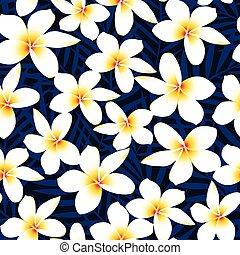 fleur, frangipanier, seamless, exotique, plumeria, modèle, blanc