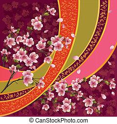 fleur, modèle, japonaise, sakura