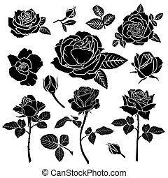 fleur, rose, silhouette, ensemble