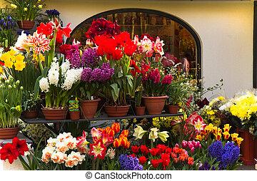 fleuriste, magasin, fleurs, printemps