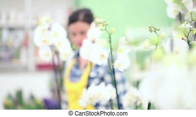 fleuriste, marche, femme, jardin