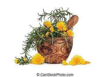 fleurs, aromate, romarin, sauvage