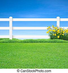 fleurs, blanc, long, jaune, barrière