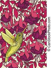 fleurs, fuchsia, colibri