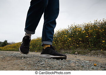 fleurs jaunes, fleur, spring., personne, route, marche, rural, unrecognized