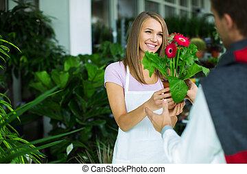 fleurs, magasin