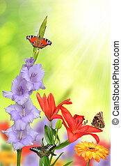 fleurs, printemps, papillons