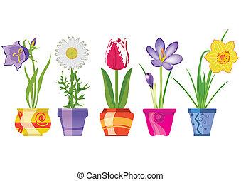 fleurs, printemps, pots