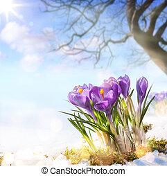 fleurs ressort, art