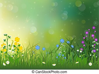 fleurs ressort, fond, coloré