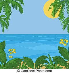fleurs, soleil, ciel, feuillage, mer