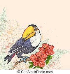fleurs, toucan, fond