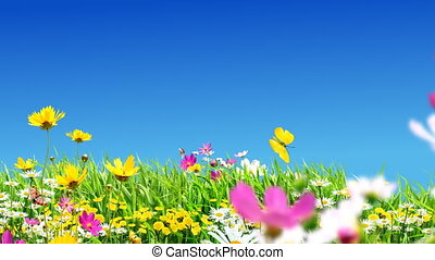 fleurs, vert, prés