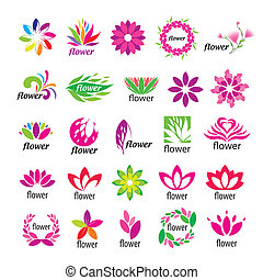 floral, logos, vecteur, collection, multicolore