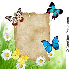 floral, papillons, papier, fond, vide