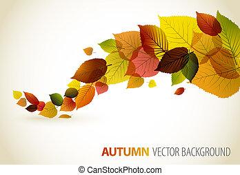 floral, résumé, fond, automne
