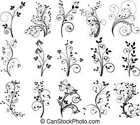 floral, vecteur, éléments conception