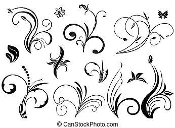floral, vecteur, éléments