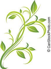 floral, vert, conception