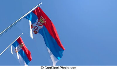 flottements, national, vent, drapeau, serbie