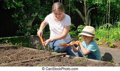 fonctionnement, mouvement, vegetables., enseignement, fils, planter, jeune, peu, jardin, lent, elle, arrière-cour, mère