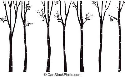 fond, arbre, silhouette, bouleau