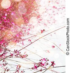 fond, art, fleur, printemps, rose