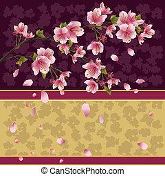fond, cerise, -, arbre, japonaise, sakura, branche