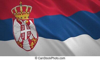 fond, drapeau, serbie, vidéo, onduler