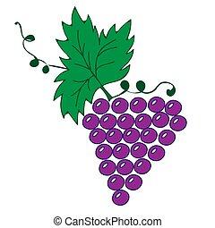 fond, feuilles, vigne, illustration, raisins, blanc