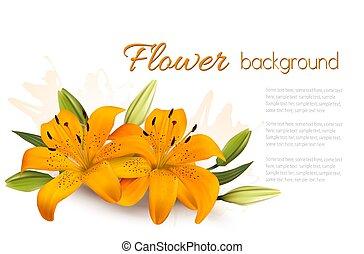 fond, fleur, lilies., beau, vector.