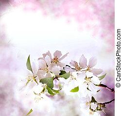 fond, frontière, fleur, printemps, rose