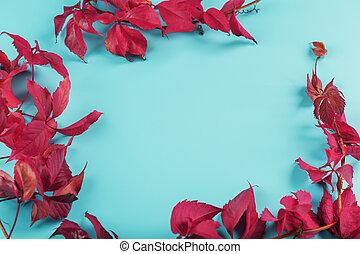 fond, gratuite, feuilles, rouges, lierre, automne, bleu, space.