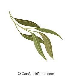 fond, illustration, feuilles, vecteur, vert, branche, stylique floral, blanc, élément