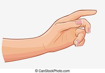 fond, isolé, main, toucher, femme, blanc