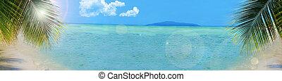 fond, plage tropicale, bannière