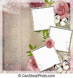 (, fond, rose, cadres, roses, vert, 1, vendange