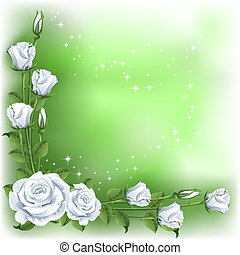 fond, roses