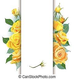 fond, roses, jaune, floral