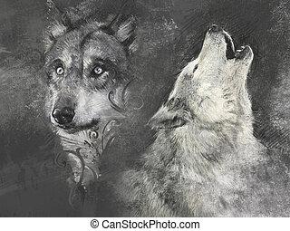 fond, wolfs, fait main, gris, illustration