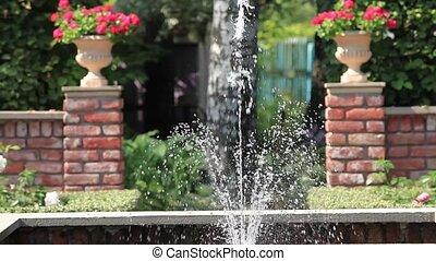 fontaine, rose, jardin