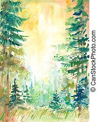 forêt, été