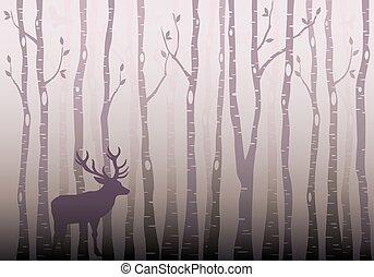forêt, arbre, vecteur, bouleau
