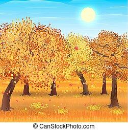 forêt automne, paysage, nature