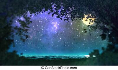 forêt, boucle, nuit