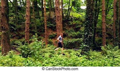 forêt, jogging homme, 4k