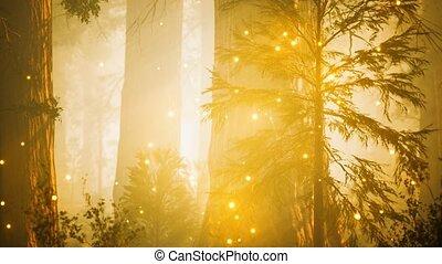 forêt, magique, luciole, fantasme, lumières