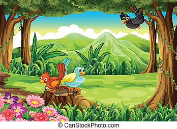 forêt, oiseaux
