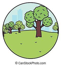 forêt parc, paysage, scène