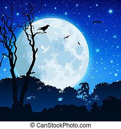 forêt, paysage, lune